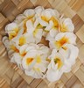 SMALL BLOSSOM PLUMERIA ANKLET or WRISTLET - EACH